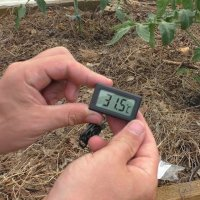 Температура в теплице: обзор способов регулировки микро-климата