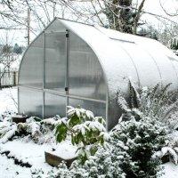 7-мь мероприятий которые нужно сделать еще зимой в теплице