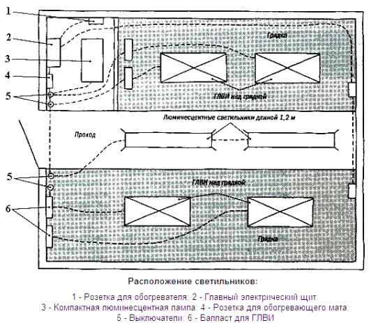 Схема расположения люминисцентных своительников над грядками.