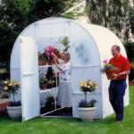 Идеальная теплица для цветов или выращивание цветов в теплице