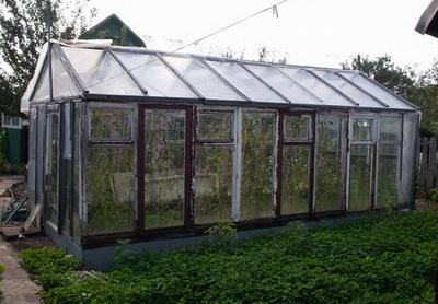 Чем лучше скреплять оконные рамы при строительстве теплицы?