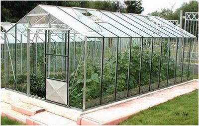 Как построить стеклянную теплицу на дачном участке?