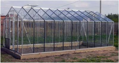 Строительство стеклянной теплицы на участке