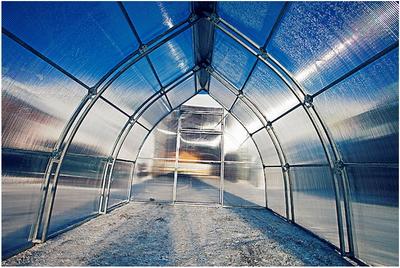 Какую готовую теплицу лучше выбрать для сибирского региона?