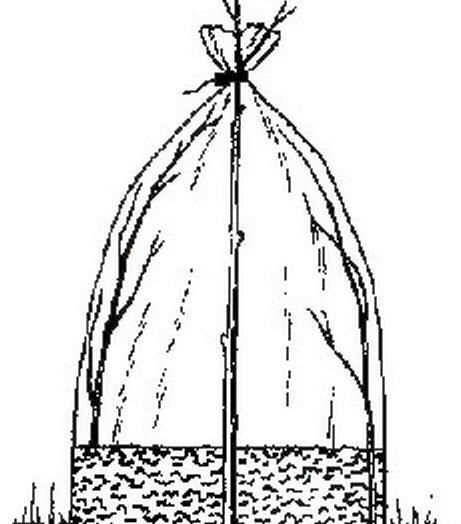 Мини-теплица