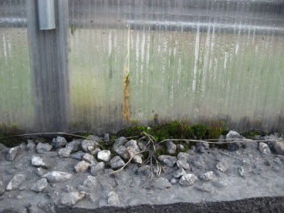 Как зависит прочность сотового поликарбоната от толщины