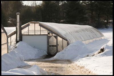 Как правильно строить теплицу в условиях сурового северного климата?