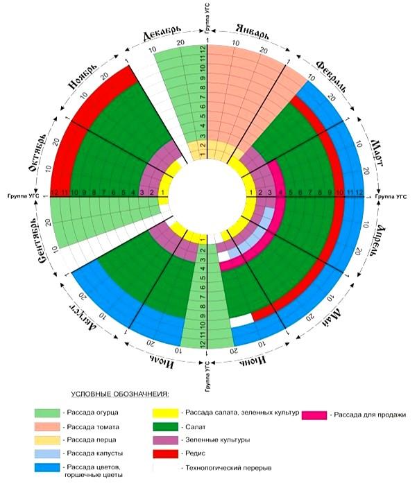 Календарь выращивания рассады для теплицы