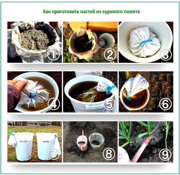 Как приготовить удобрение из помета