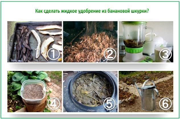 Как сделать компост из банановых шкурок