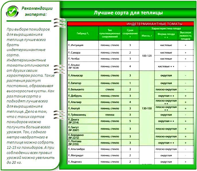 Таблица свойств семян помидоров