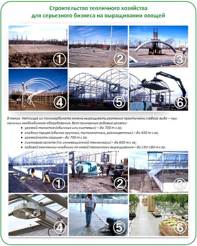 Строительство тепличного хозяйства