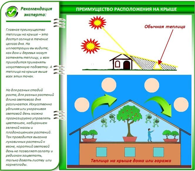 Преимущества теплицы на крыше