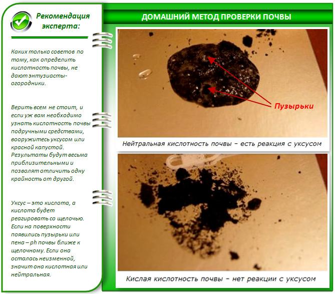 Как определить рН почвы в теплице