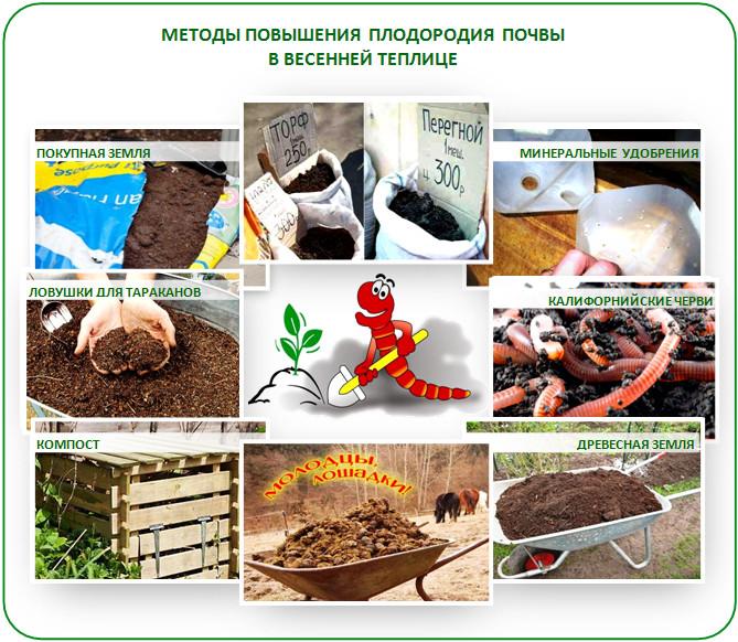 Удобрения почвы теплицы весной