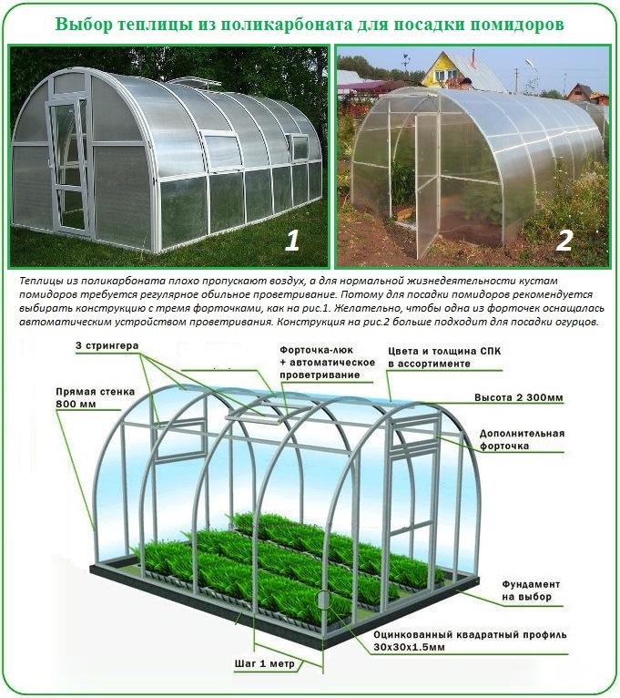 Как выбрать теплицу из поликарбоната для посадки и выращивания помидоров