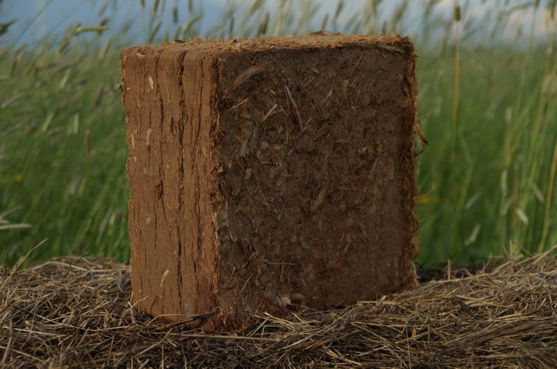 Кокосовый субстрат в теплице: польза и способы применения