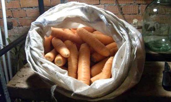 хранение моркови в мешках