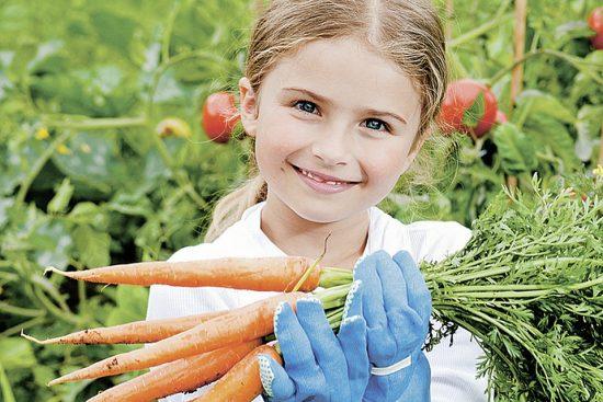 Девочка с морковью в рука на огороде