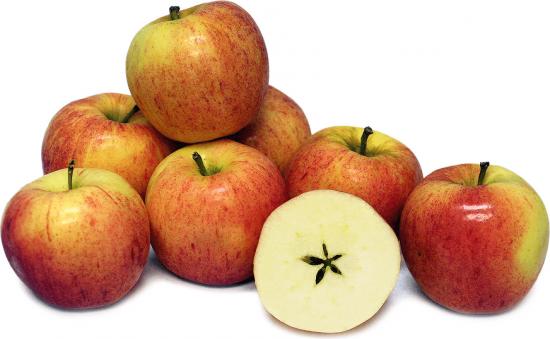 Яблоко Гала в разрезе