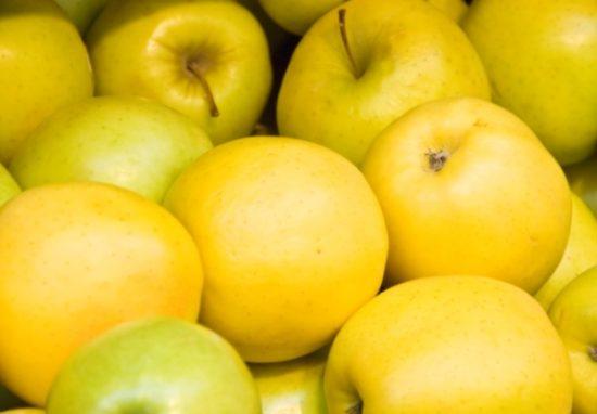 Спелые яблоки Голден Делишес