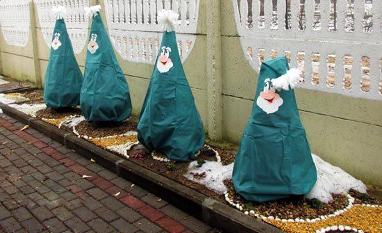 Укрытие саженцев на зиму
