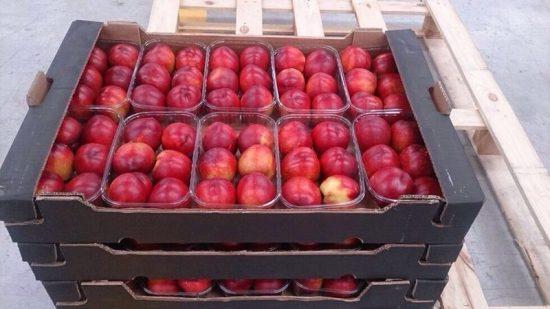 Магазинные персики