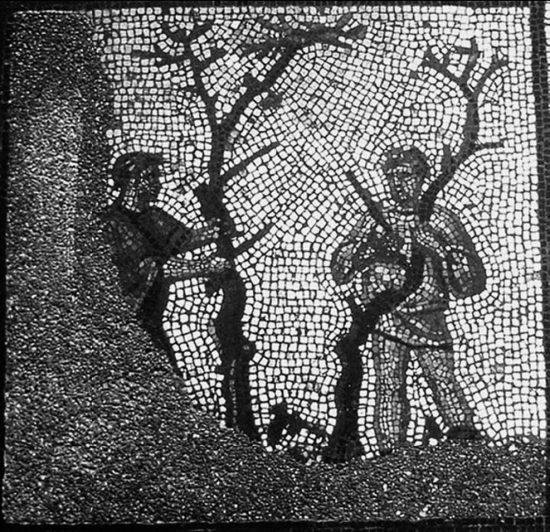 Фрагмент мозаики «Прививка деревьев»