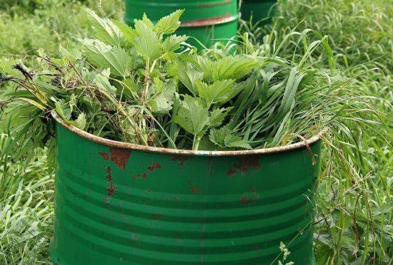 Готовим зелёное удобрение