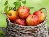 Сладкие яблоки