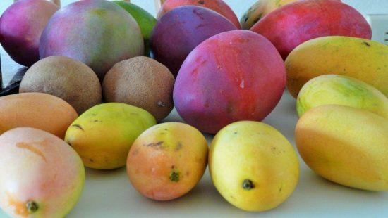 Плоды манго разных сортов
