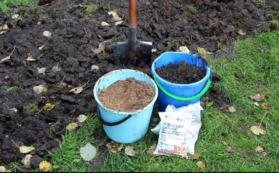 Почва для унаби