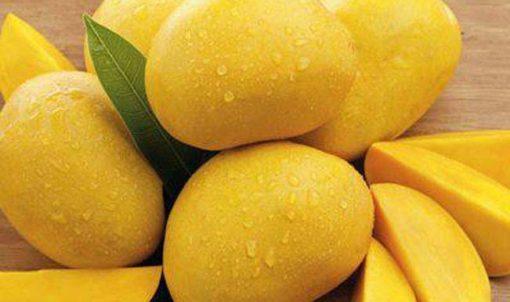 Манго сорта Kesar
