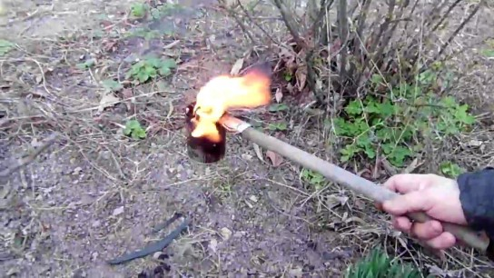 Обработка смородины огнём