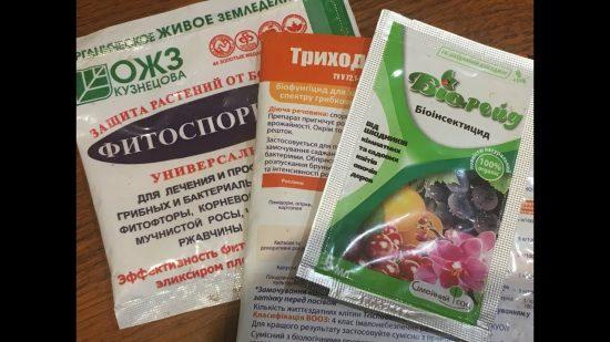 Биопрепараты для смородины от заболеваний