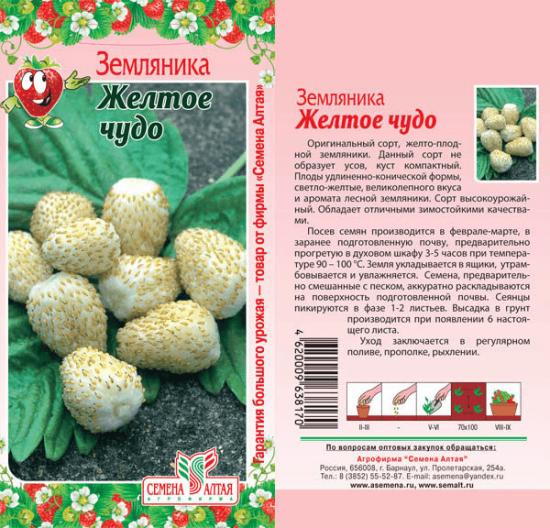 Пакет с семенами земляники