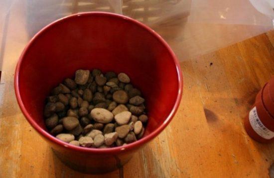 Горшок с дренажным слоем камней