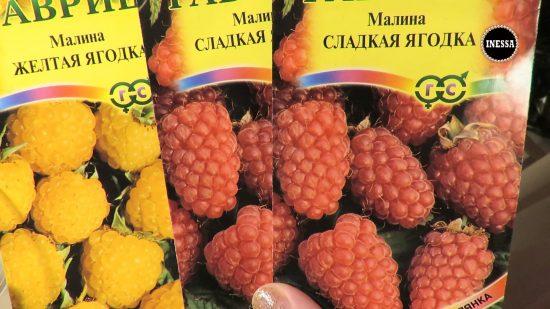 Пакетики с семенами малины