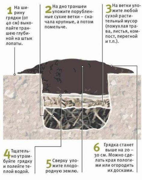 Грядка-траншея для клубники