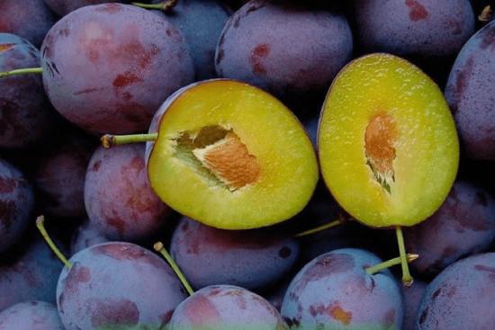 Плоды сливы Анна Шпет в разрезе