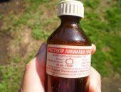 Нашатырный спирт (раствор аммиака) на огороде