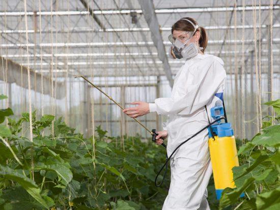 обработка растений