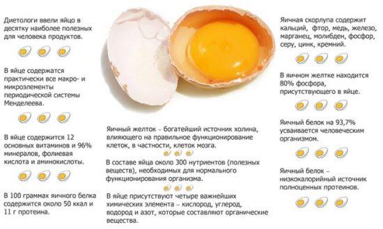 Список полезных веществ в яйце