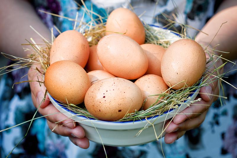 Можно ли есть яйца каждый день: и что от этого будет?