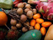 Редкие экзотические фрукты