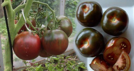 Разные сорта чёрных томатов