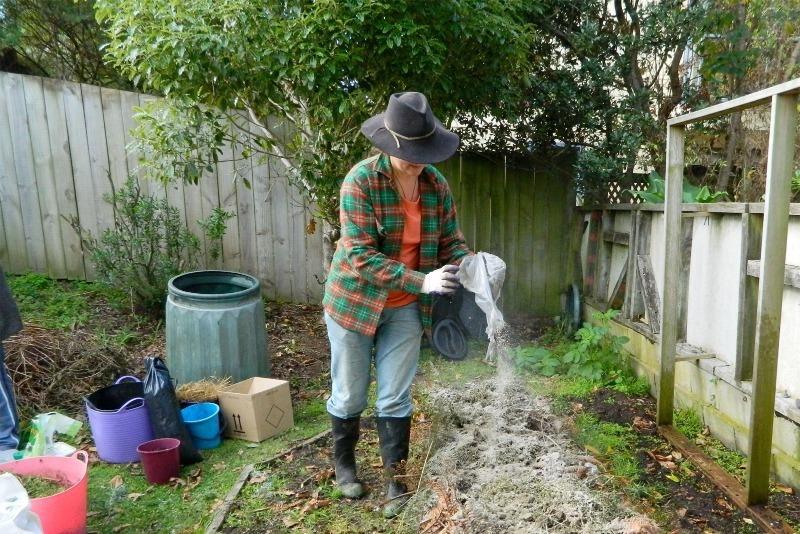 Фосфор или калий: используем золу для растений по уму