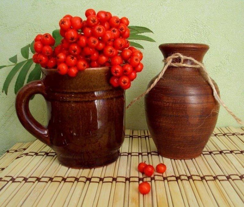 7 напитков, которые можно приготовить из красной рябины