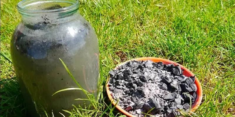4 способа приготовления и эффективного использования удобрений из золы
