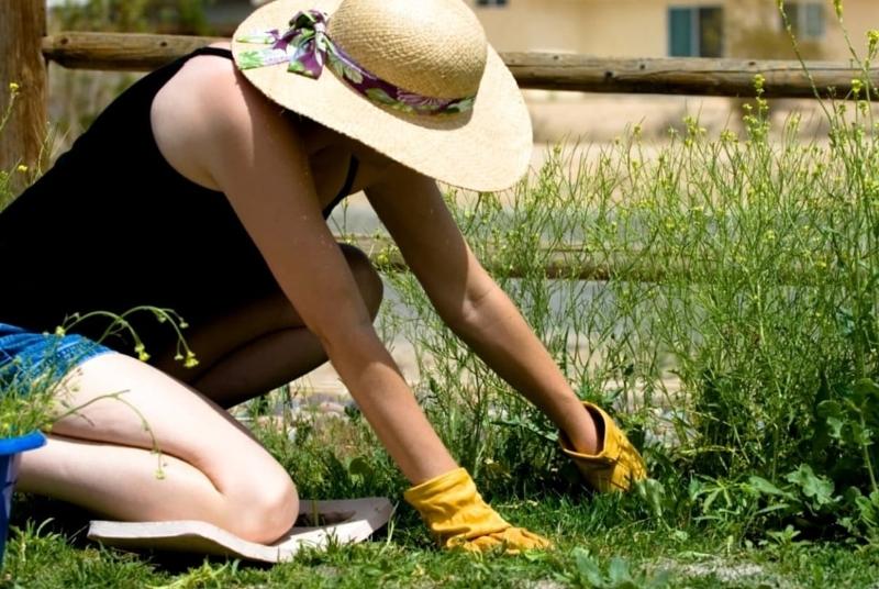 5 способов, как защитить колени во время посадки растений